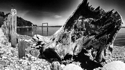 bw monochrome vashonisland iphone project365 500px 235365 iphone365 iphoneography snapseed