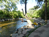 CreekAugust13-2014  :   DSCN2805
