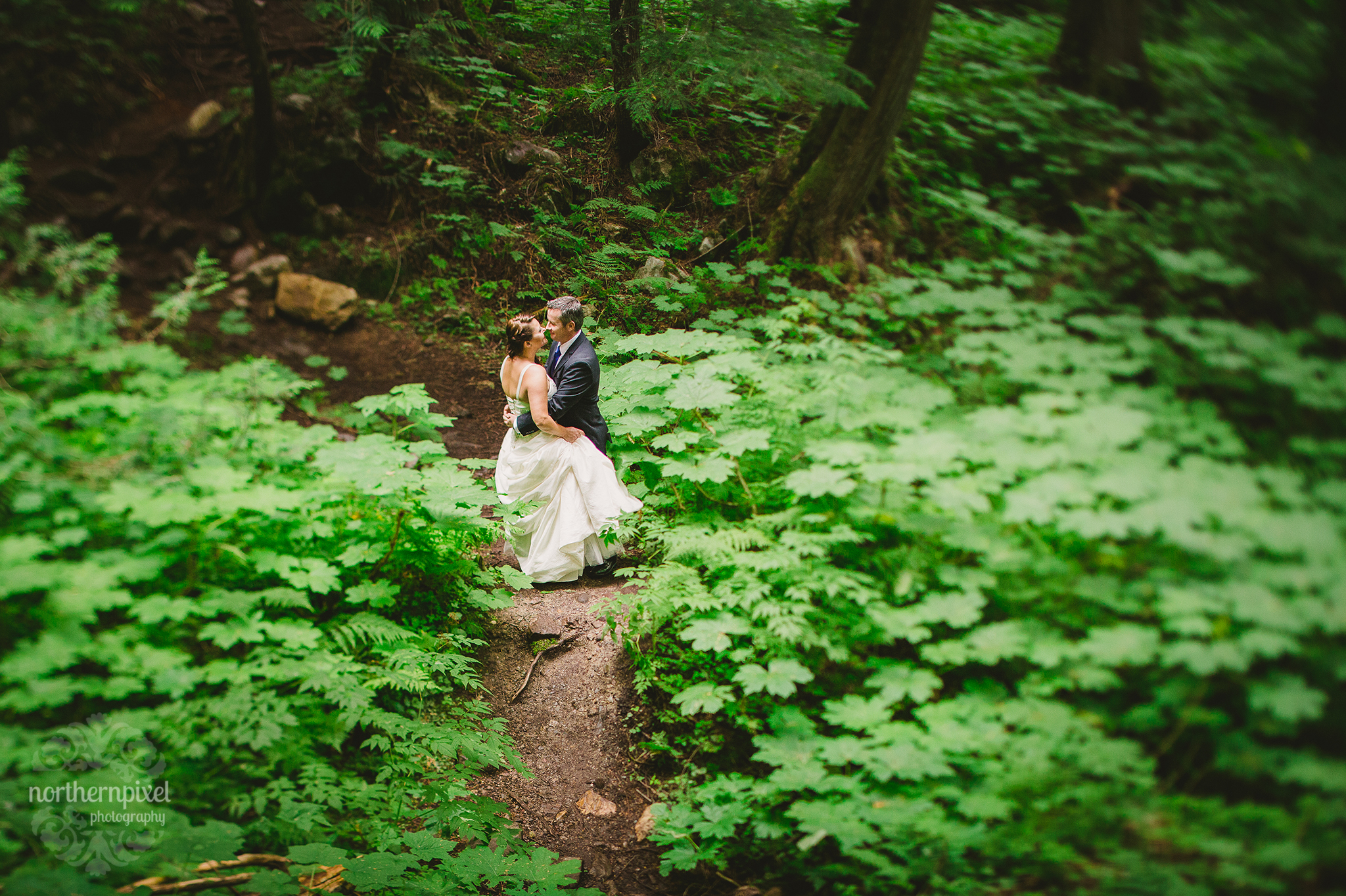 Ancient Forest Prince George British Columbia Wedding Photographer