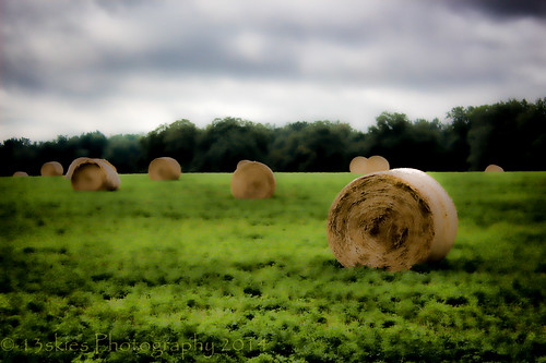 food wow living soft day farmers eating country farming produce growing hay machines parison