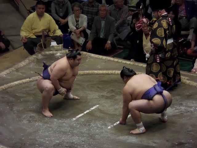 Short Sumo Match 2