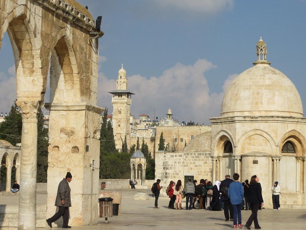 Israel 504