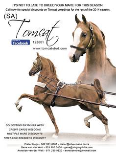 Tomcat-Ad-May2014