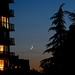 crescent_moon.