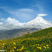 کوه دماوند ، دشت آزو Mount Damavand, plain azoo by Hadi Nikkhah