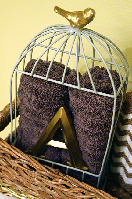 Close-up-of-bird-cage