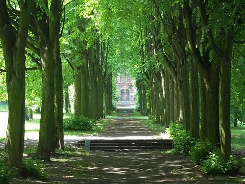 gdańsk poland park cerkiew