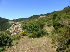 Traversée du sentier de Calafronaja vers la crête de Cavalletti en raccourci