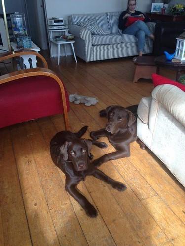 Sadie & Chelsea