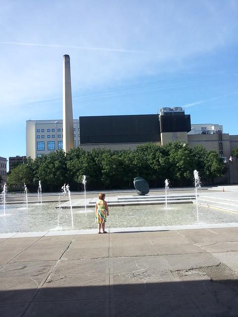 Tabby at a fountain
