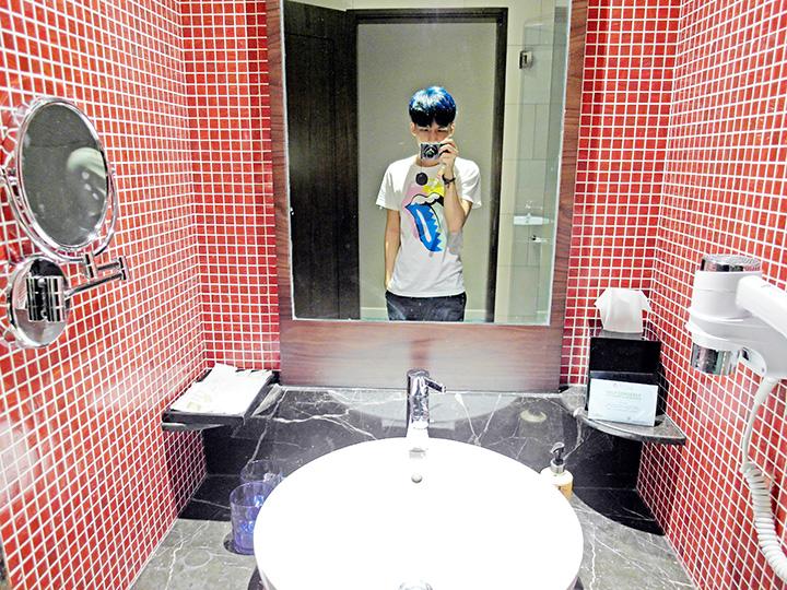 festive hotel rws  toilet
