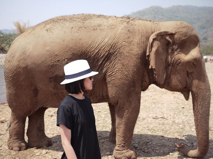 Elephant Nature Park Chiang Mai-19