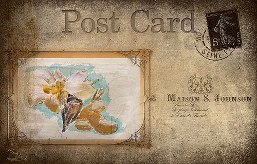 Image of a vintage post card