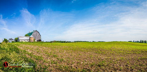 green wisconsin barn rural canon place farm crop wi centralwisconsin discoverwisconsin travelwisconsin 5dmarkiii