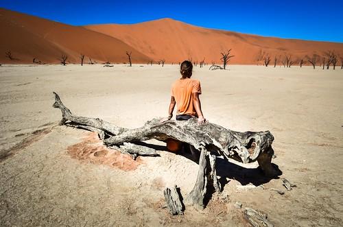 Arbres de Dead Vlei, parc national de Namib-Naukluft, Namibie
