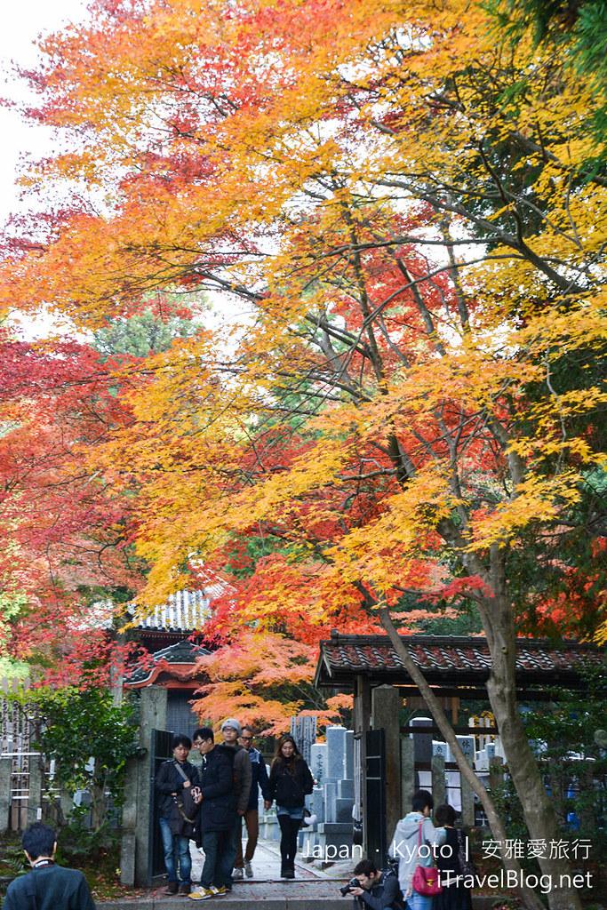 京都 赏枫 东福寺06
