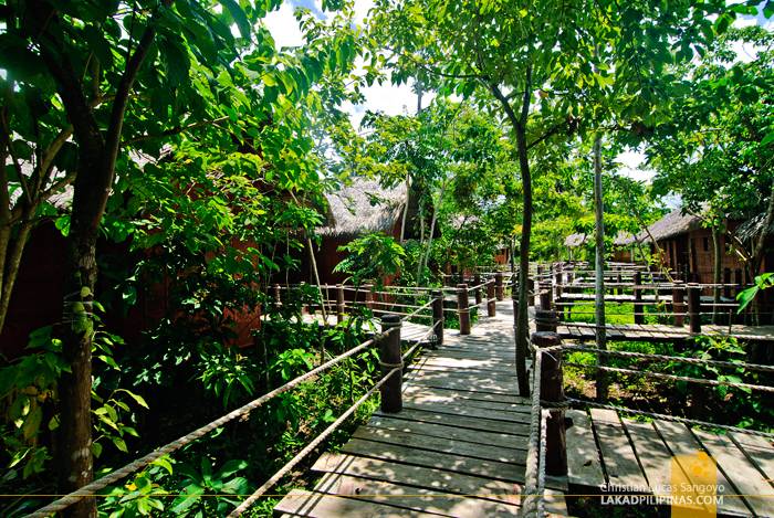 Wooden Bridge Pathways at the Loboc River Resort in Bohol