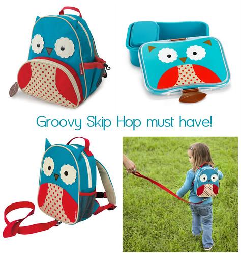 groovy skip hop