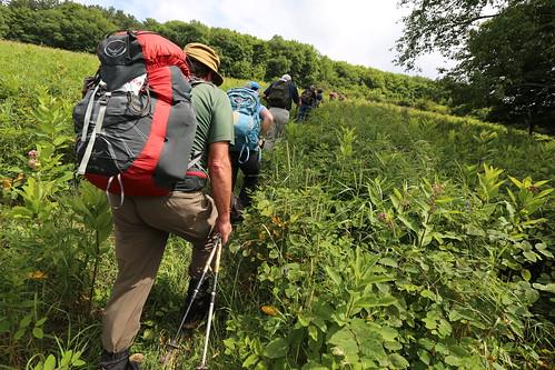 Hike in Bovina