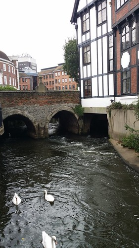 The Hogsmill River in Kingston #sh #LondonLOOP