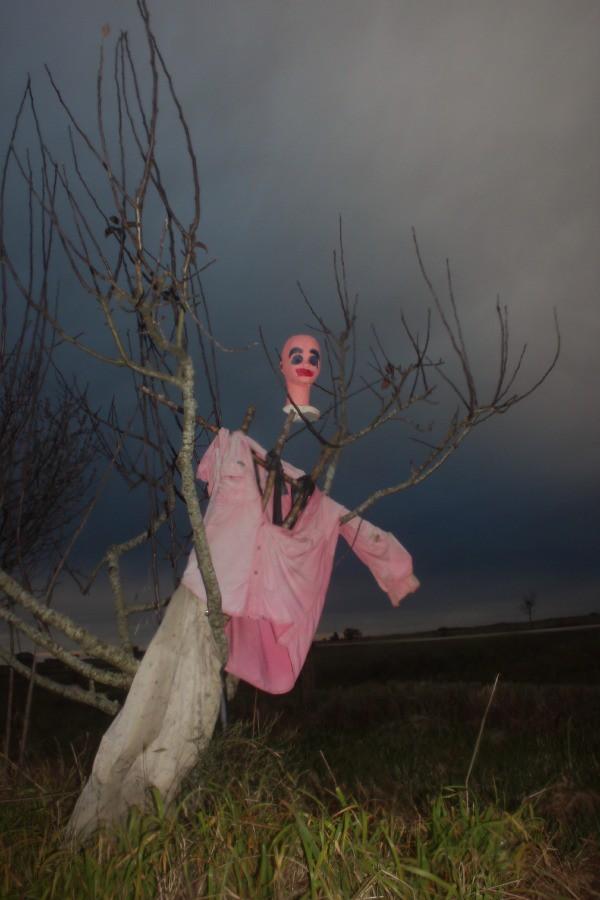 Scarecrow α