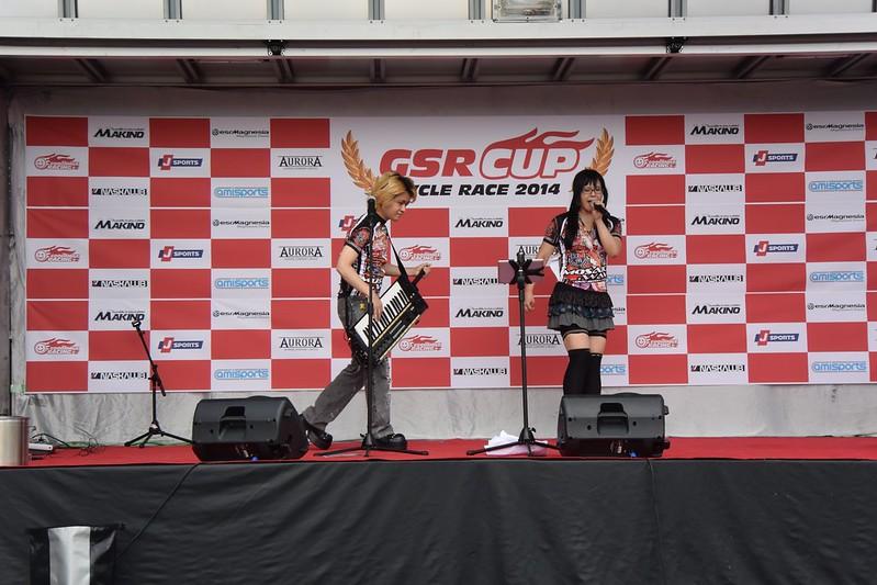 GSR CUP 2014