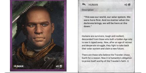 destiny-human-Grimoire-Cards