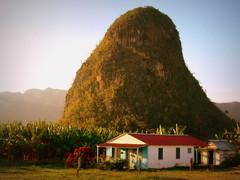 Vinales, Cuba, la maison au pied du mogote-The house under the mogote.