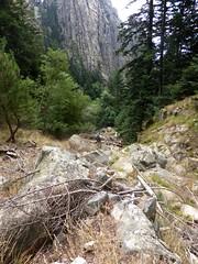 Descente de la Purcaraccia : dans le lit du ruisseau vers la 1ère confluence