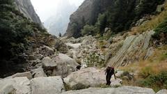 La remontée du ruisseau d'U Candelli après la descente depuis Bocca Pulischellu (photo Victor Gomis)