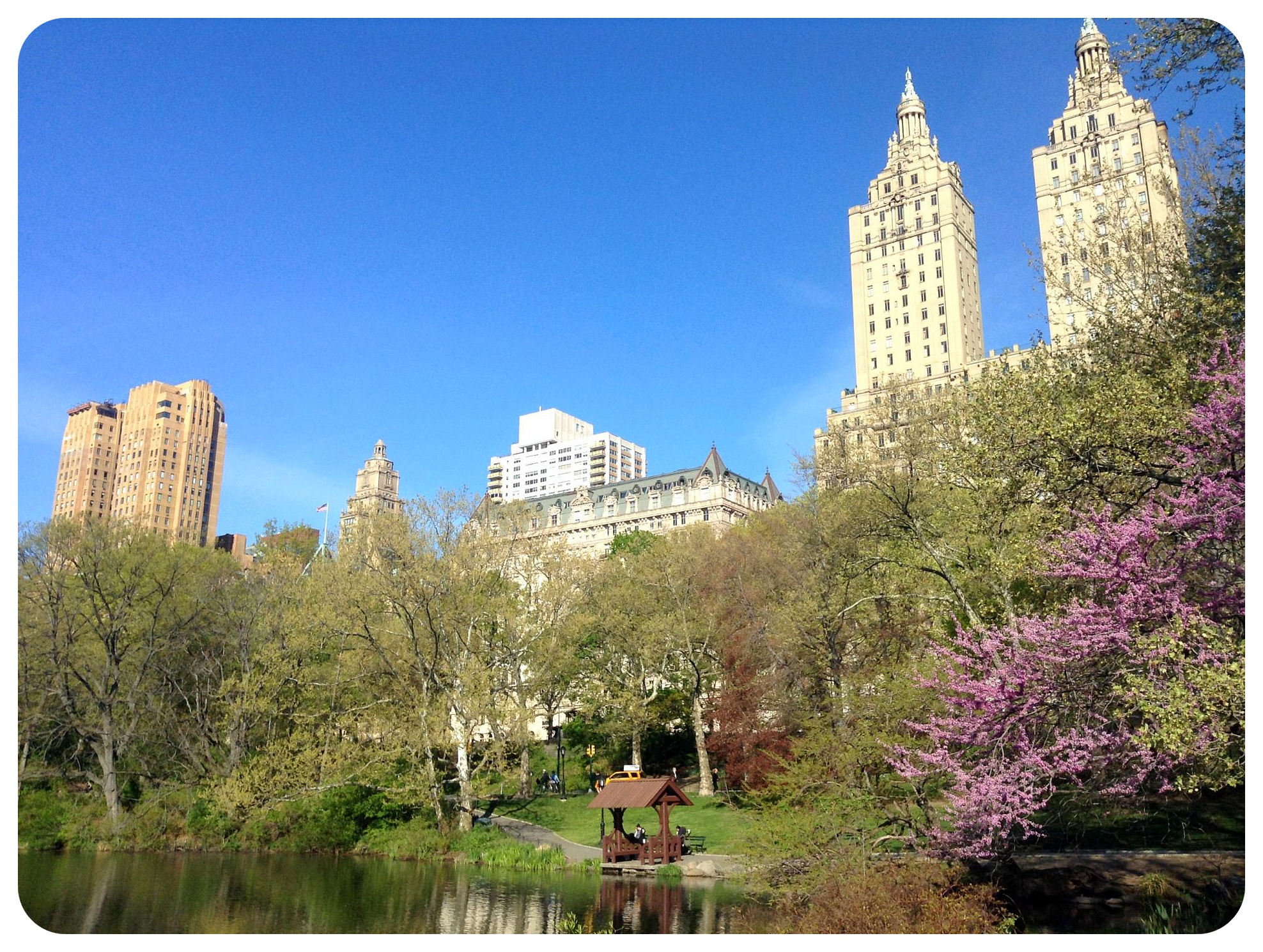 central park may 2014 nyc