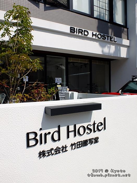 2017bird hostel1.JPG
