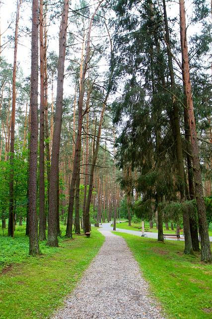 Birštonas | Vytauto parkas