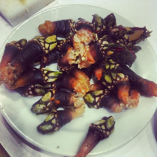 Gooseneck barnacles, Cervejaria Ramiro, Lisbon. Just one of several dishes of an amazing meal that also included clams in broth, a giant steamed crab, tiny prawns in olive oil and garlic, grilled buttery bread, and rather incongruently, a garlicky steak s