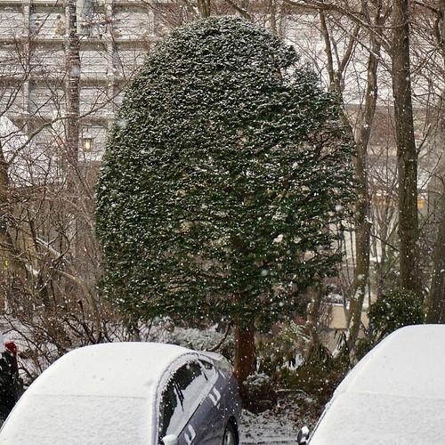 trees snow cars japan scenes selp1650 ilce6000