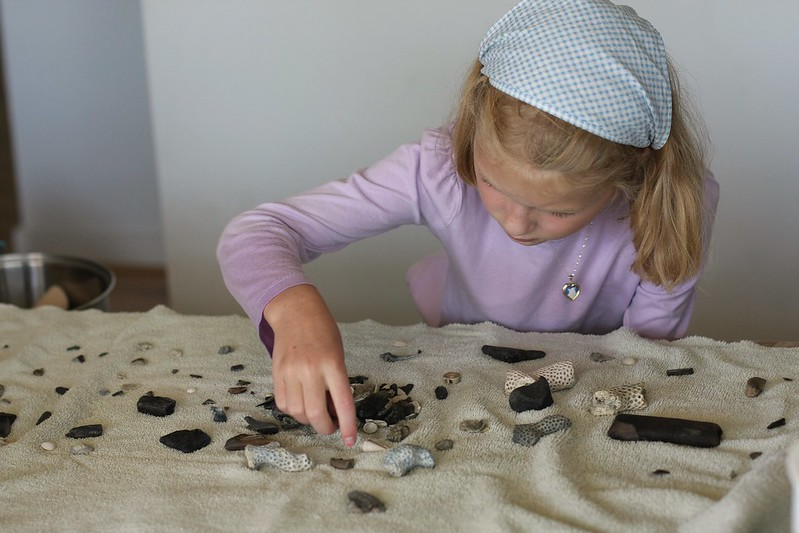 cleaning and examining her fossils