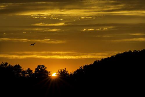 sunset sun tree clouds sunrise landscape nikon delaware smyrna dover bir bombayhooknwr nikond7100