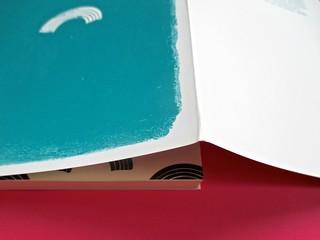 Romanzi, collana di Tunué edizioni. Progetto grafico di Tomomot; impaginazione di TunuéLab. Copertina, risvolto di cop., carta di guardia [Barison] (part.), 1