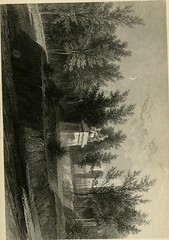 "Image from page 249 of ""Mount Auburn: its scenes, its beauties, and its lessons"" (1861)"