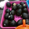 Telur rebus hitam. Tak ada lagi putih telur  #kuliner #Solo