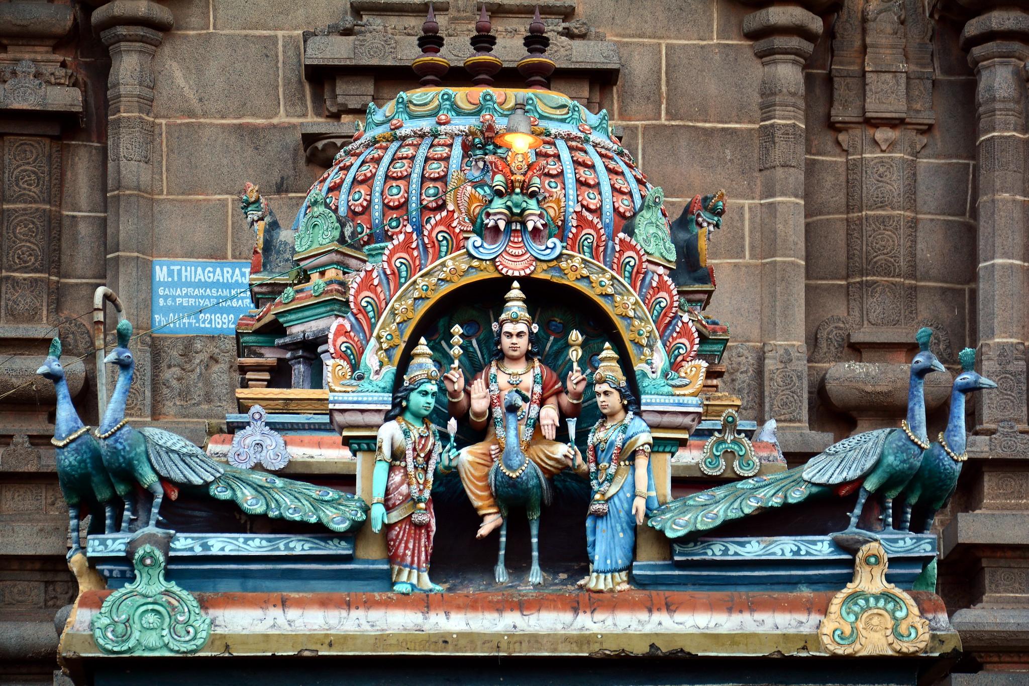 India - Tamil Nadu - Chidambaram - Nataraja Temple - 65
