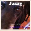 jazzy 5