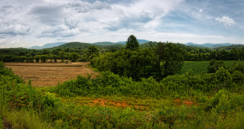 vacation sky panorama terrain usa cloud mountain flower tree weather georgia landscape cloudy pasturefield edrosack