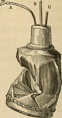 """Image from page 423 of """"Transactions of the American Philosophical Society"""" (1771)"""