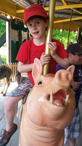 pigs on the carousel!