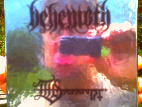 210/365 • satanist selfie