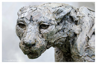 cheetah sculpture 34/52