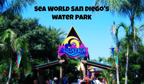 SeaWorldSanDiegoAquatica