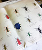 Scientific Beetle fabric