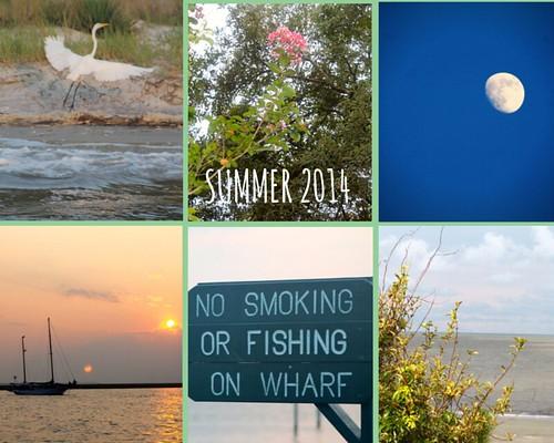 Summer 2014 Collage